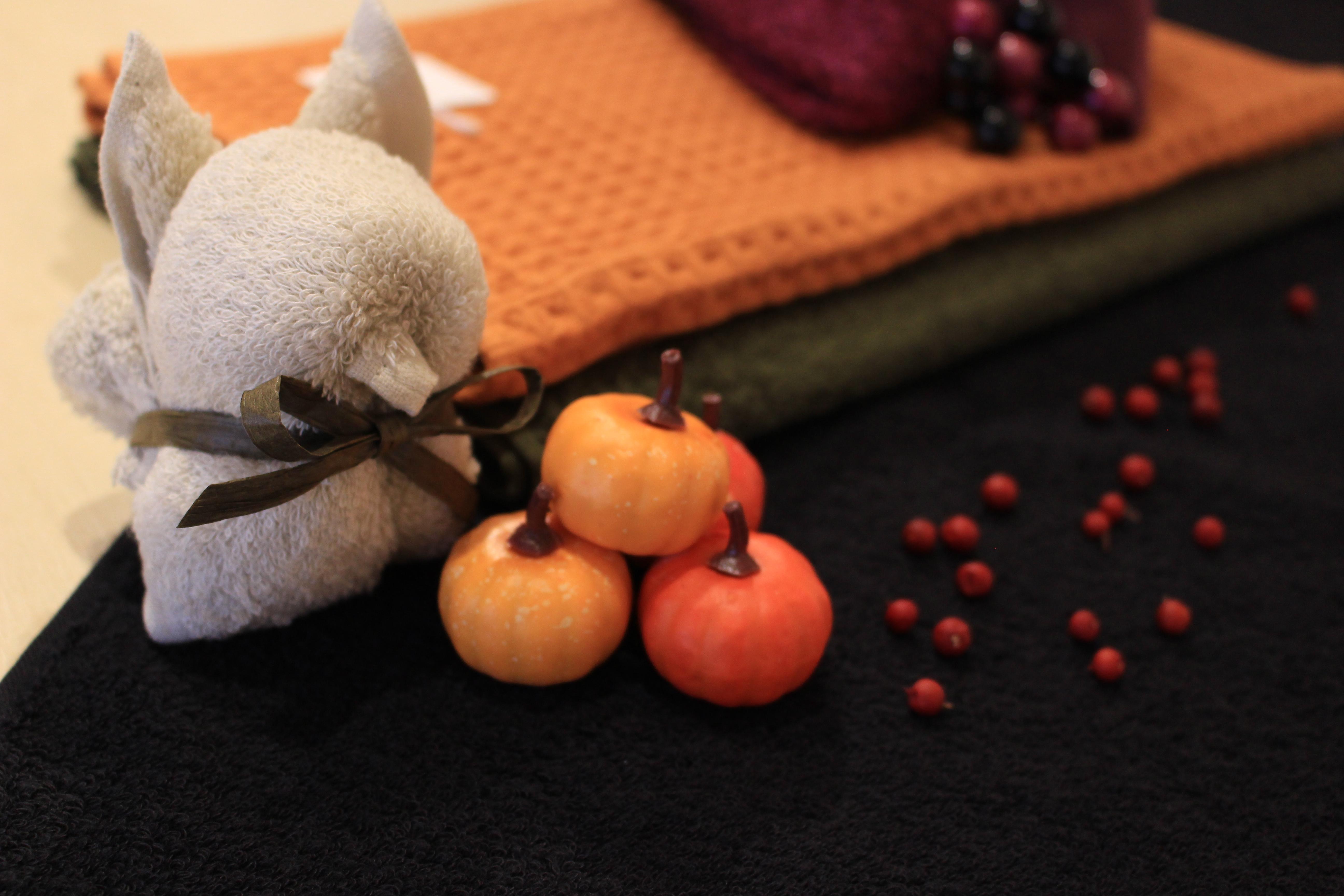 秋ならではの、色合いが楽しめます